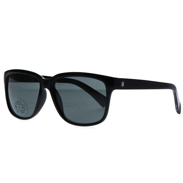 Очки Boardriders Oculos Shiny Black/Green