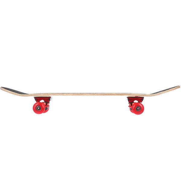 Скейтборд в сборе Turbo-FB Silence Multi 31.5 x 8 (20.3 см)