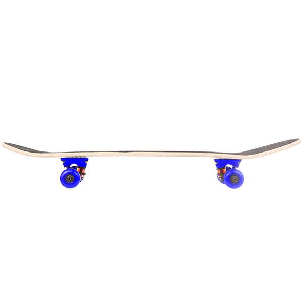 Скейтборд в сборе Turbo-FB Beard Skull