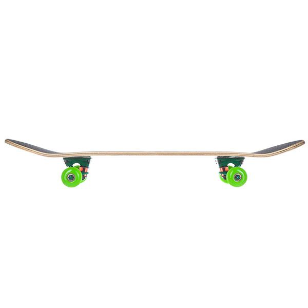 Скейтборд в сборе Turbo-FB Classic Orange Green