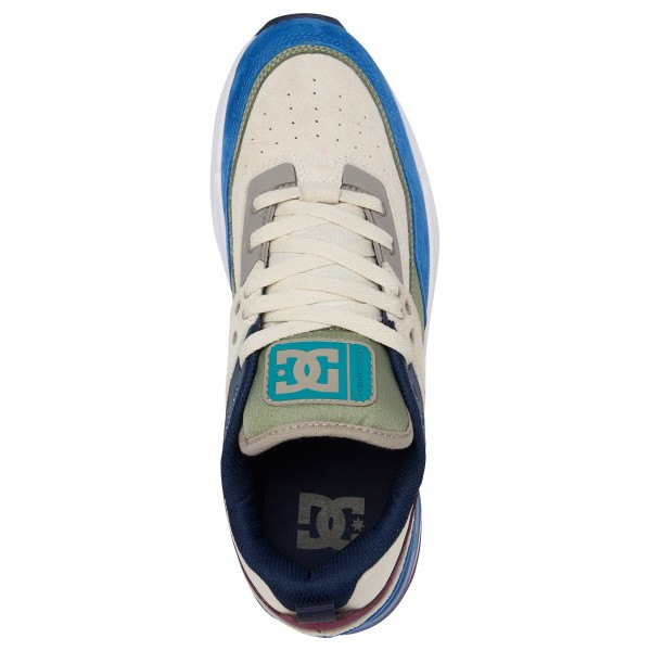 Полуботинки DC Shoes E.tribeka Se M Shoe Xbwg Blue/White/Green