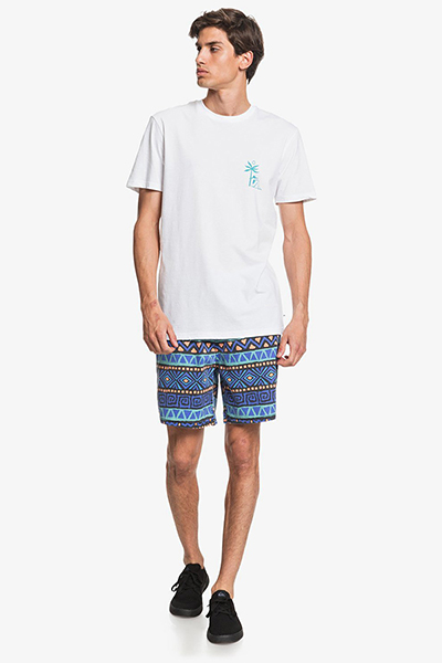 Футболка QUIKSILVER Morningbirdss Tees White
