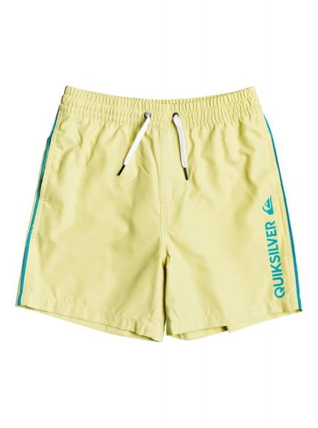 """Детские плавательные шорты Vert 14"""" 8-16 Quiksilver"""