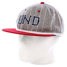 Бейсболка Undefeated Und Felt Ebbets Ballcap Grey Heather