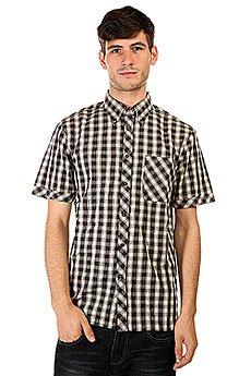 Рубашка в клетку Element Cortes Black