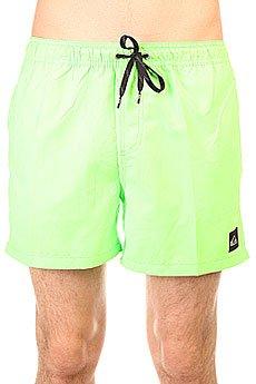 Шорты пляжные Quiksilver Every Volley Jamv Green Gecko