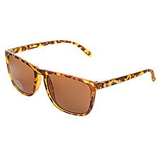 Очки DC Shoes Shades Matte Tortoise/Brown