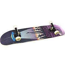 Скейтборд в сборе Юнион Monuments Multi 31 x 7.5 (19 см)