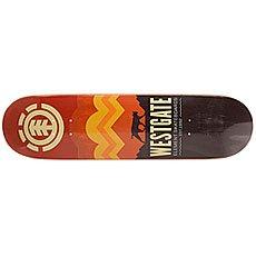 Дека для скейтборда Element Westgate Ranger Multi 31.875 x 8 (20.3 см)