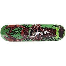 Дека для скейтборда Creature Creek Freaks Team Green/Multi 31.7 x 8.125 (20.6 см)