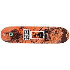 Дека для скейтборда Creature Gravette Viscerous Pro Green/Multi 32.04 x 8.25 (21 см)