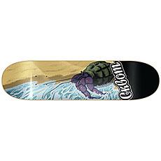 Дека для скейтборда Сквот Crab Multi 8.125 (20.6 см)
