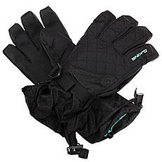 Перчатки сноубордические женский Dakine Lynx Glove Tory