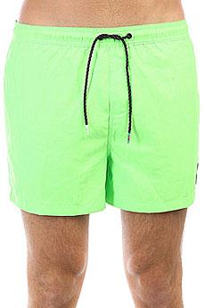 Шорты пляжные Quiksilver Everydvl15 Green Gecko
