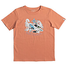 Футболка детская Quiksilver Ss Days On Cadmium Orange