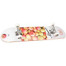 Скейтборд в сборе Юнион Harvest Apple Multi 31.25 x 7.6 (17.8 см)