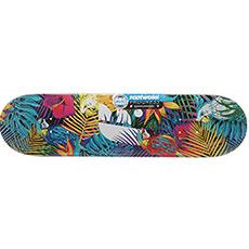 Дека для скейтборда Footwork Progress Tropical Multi 31.5 x 8 (20.3 см)