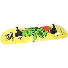 Скейтборд в сборе Nomad Complete Medium Marihuana 32 x 8.25 (20.3 см)