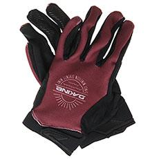 Перчатки сноубордические женские Dakine Skylark Glove Burnt