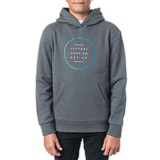 Толстовка кенгуру детская Rip Curl Basic Logo Gradian Hooded Fleece Pewter Grey Marle