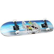 Скейтборд в сборе  Race Surf Blue Topaz 30.5 x 7.8 (20 см)2