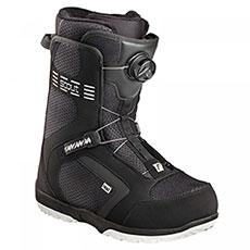 Ботинки для сноуборда детские Head Scout Pro Boa Black