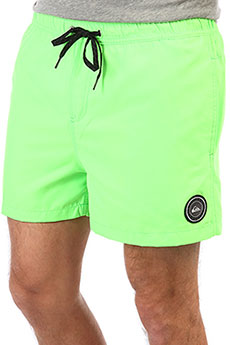 Шорты QUIKSILVER Everydayvl Green Gecko