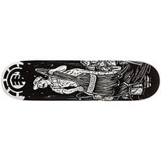 Дека для скейтборда Element Timber Sp Painter Assorted 32.06 x 8 (20.3 см)