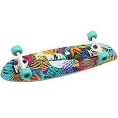 Скейт круизер Footwork Tropical Multi 7.75 x 27.25 (68.5 см)