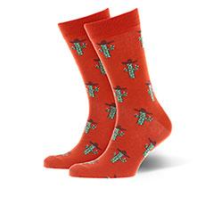 Носки Happy Socks Cactus Brown