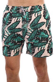 Шорты Rip Curl Volley Paradise 16' Green