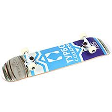 Скейтборд в сборе Turbo-FB Sguschenka Multi 31.5 x 8 (20.3 см)