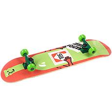 Скейтборд в сборе Turbo-FB Wine Multi 31.5 x 8 (20.3 см)