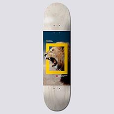 Дека для скейтборда Element Nat Geo Nyjah Lion 8 Assorted