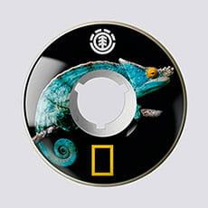Колеса для скейтборда Element Nat Geo Iguana Filme Assorted