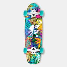 Footwork Tropical 7.75 X 27.25 Скейт-Круизер