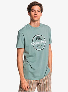 Футболка QUIKSILVER Wordsremainss M Tees Gkb0 Chinois Green