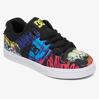 Кроссовки DC Shoes Pure Tx Se B Shoe Mlt Multi