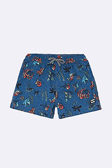 Шорты детские Billabong Для Плавания Under Water Lb Boy Blue