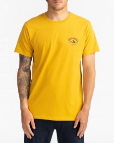 Мужская футболка Arch Peak