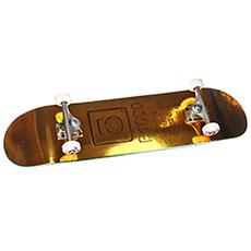 Скейтборд в сборе Юнион Gold Bar 8,125x31,75 Medium, Колёса 52mm/102a Подвески 139, Подшипники ABEC 7