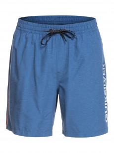 """Мужские плавательные шорты Vert 15"""""""